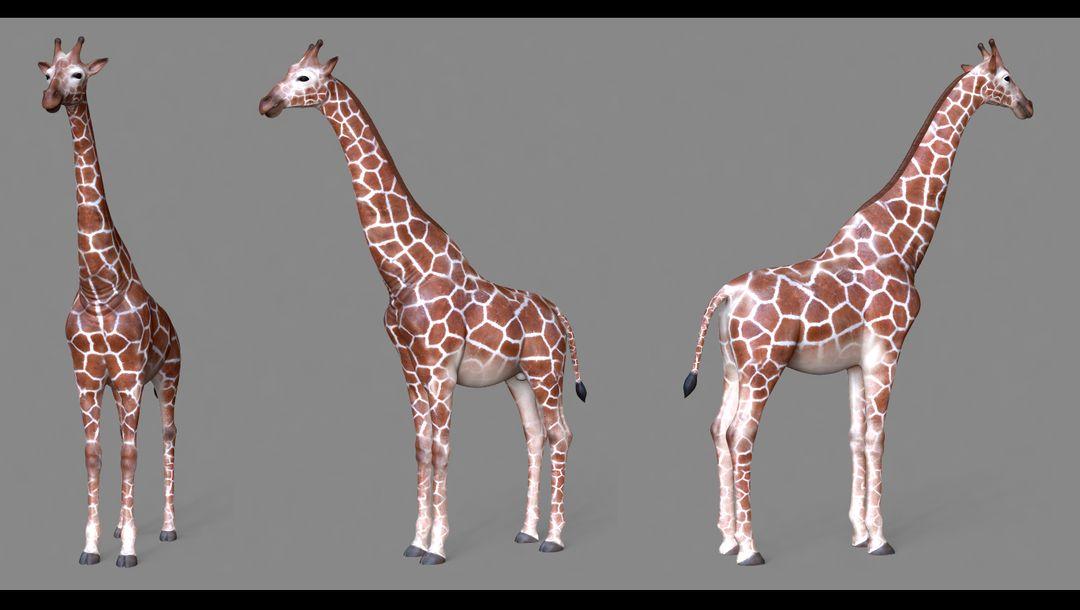 giraffe-texture.jpg